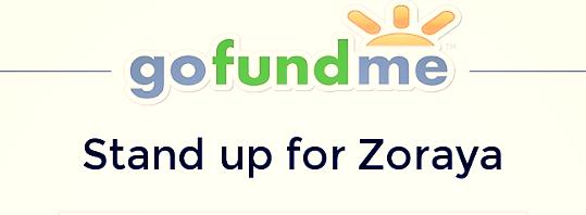 gofundme-standupforzoraya 2- CAUSES 2015